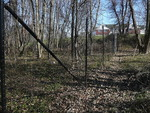 Deer Exclosure at Old Farm Field - non-native plants not removed