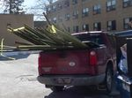Bamboo Removal, Lucas Vancovich's Eagle Scout Project, Gordon Natural Area (5)