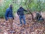Friars Society Removes Amur Honeysuckle & Privet, Gordon Natural Area (2)