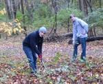 Friars Society Removes Amur Honeysuckle & Privet, Gordon Natural Area (3)
