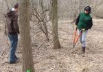 Removing Non-native Vines from the Gordon Natural Area (2)