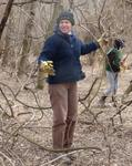 Removing Non-native Vines from the Gordon Natural Area (4)