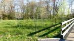 East Goshen Township Forest Restoration Project 2014 (1)