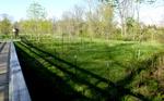 East Goshen Township Forest Restoration Project 2014 (5)