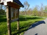 East Goshen Township Forest Restoration Project 2014 (8)