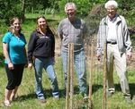 Reintroduction of the American Chestnut to the Gordon Natural Area by Gerard Hertel