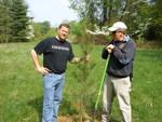 Drs. Greg Turner & Martin Helmke Plant a Pine, Gordon Natural Area (1)