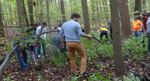 Friars' Society Pulling Invasive Jetbead and Planting Native Trees, Gordon Natural Area (10)