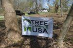 Tree Campus USA/Arbor Day 2015 tree planting, Gordon Natural Area (1)