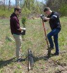 Tree Campus USA/Arbor Day 2015 tree planting, Gordon Natural Area (3)