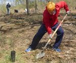 Tree Campus USA/Arbor Day 2015 tree planting, Gordon Natural Area (5) by Gerard Hertel