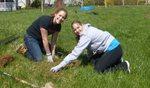 Tree Campus USA/Arbor Day 2015 tree planting, Gordon Natural Area (17)