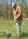 Tree Campus USA/Arbor Day 2015 tree planting, Gordon Natural Area (18)