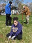 Tree Campus USA/Arbor Day 2015 tree planting, Gordon Natural Area (20)