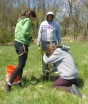 Tree Campus USA/Arbor Day 2015 tree planting, Gordon Natural Area (23)