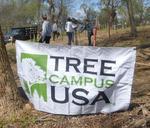 Tree Campus USA/Arbor Day 2015 tree planting, Gordon Natural Area (27)