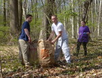 7th Annual Garlic Mustard Pull, Gordon Natural Area (7) by Gerard Hertel