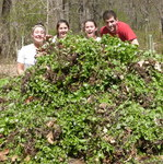 7th Annual Garlic Mustard Pull, Gordon Natural Area (5)