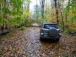 Superstorm Sandy Damage 2012, Gordon Natural Area (4) by Gerard Hertel