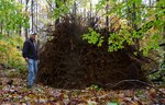Superstorm Sandy Damage 2012, Gordon Natural Area (24)