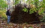 Superstorm Sandy Damage 2012, Gordon Natural Area (24) by Gerard Hertel