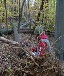 Superstorm Sandy Damage 2012, Gordon Natural Area (25)