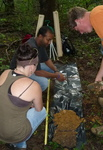 Soil Sampling, Gordon Natural Area (1)