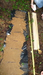 Soil Sampling, Gordon Natural Area (4) by Gerard Hertel