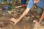 Soil Sampling, Gordon Natural Area (27)