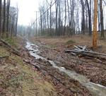 Washout in the PECO right-of-way, Gordon Natural Area (4)