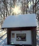 Winter in the Gordon Natural Area (12)