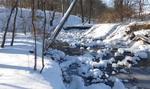 Winter in the Gordon Natural Area (14)