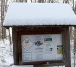 Winter in the Gordon Natural Area (20)
