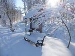 Winter in the Gordon Natural Area (24)