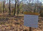Golden Ram Trail, Gordon Natural Area (8)