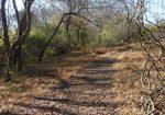 Golden Ram Trail, Gordon Natural Area (9)