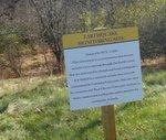 Golden Ram Trail, Gordon Natural Area (15)