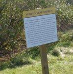Golden Ram Trail, Gordon Natural Area (17)