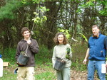 Planting White Oaks in the Gordon Natural Area by Gerard Hertel