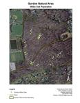 Gordon Natural Area White Oak Population by Rachel Stern